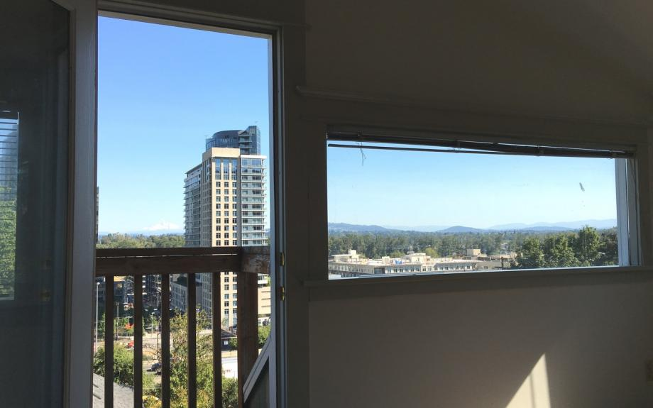 View of South Waterfront and Mt. Hood! Minutes to OHSU And Downtown!! Pets Okay!! - Portland apartments for rent - backpage.com